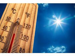 命に関わる「熱射病」…熱中症・日射病・熱射病の違い